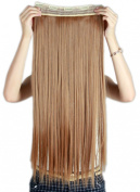Sexybaby 70cm Straight Synthetic One Piece 5 Clips 3/4 Full Head Clip in Hair Extension