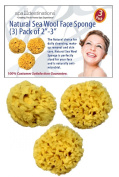 """Special Introductary Offer! Save 50% - Face Sea Wool Sponge 5.1cm - 7.6cm (3) Pack by Spa Destinations® """"Creating The In Home Spa Experience"""" $15.00 Value! While Supplies Last!!!"""
