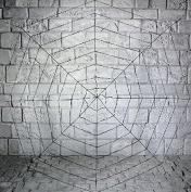 Black Spiders Web - 180cm