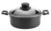 Caroni A180420 Easy Cooking Dutch-Oven with Glass Lid, 20cm