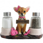 Pretty in Pink Girl Chihuahua Glass Salt and Pepper Shaker Set with Holder Figurine in Dog Statues & Sculptures and Decorative Southwestern Kitchen Decor Gifts