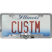 Auto Drive Skull Flames Licence Plate Frame