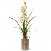 National Tree GAPF30-30C 80cm . Potted Flower - Cream