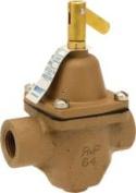 Watts Water Technologies 484001 Feed Water Pressure Regulator .13cm . Ips Without Union