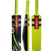 New Grey Nicolls English Willow Cloud Catcher Cricket Bat Training Hd Foam Blade