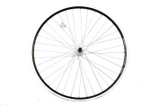 Wilkinson Alloy Narrow Section Rear Wheel with Quick Release