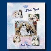 SHIH TZU Gift Bag-large-By Best Friends by Ruth