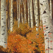 """Oil Painting Print of Quaking Aspen Forest"""" Orange Study"""" -11x11, Painted By Stewart Huntington"""