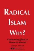 Radical Islam Why?