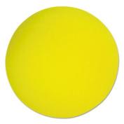 Champion Sport RD7 Uncoated Regular-Density Foam Balls 7 Diameter Yellow