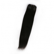 Hot Queen Peruvian Straight Remy Clip In Human Black Hair Clips For Extensions 110g 7Pcs/set