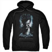 Batman Arkham Origins-Joker - Adult Pull-Over Hoodie Black - 2X
