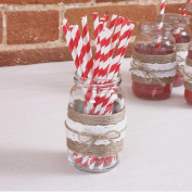 Just My Type Red & White Stripe Paper Straws
