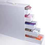 Totally-Tiffany Stash and Store 5-Drawer Case, White