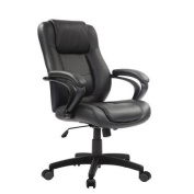 Eurotech Seating Pembroke Manager Chair with Arms