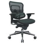 Eurotech Seating Ergohuman Mesh Desk Chair