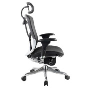Eurotech Seating Fuzion Luxury High-Back Chair with Arms