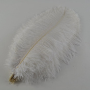 Sowder 10pcs Ostrich Feathers 16-18inch(40-45cm) for Home Wedding Decoration