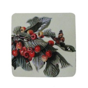 8 Absorbent Antique Style Cherry Branch and Butterfly Cocktail Drink Coasters 10cm