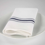 Riegel Premier Hotel Quality Striped Bistro Napkins, 46cm x 60cm , 4-Pack