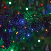 Battery Operated 100 LED Indoor Outdoor Multi-Coloured String Lights