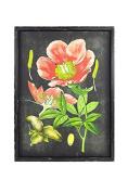 Vagabond Vintage, Rustic Rectangular Wood Framed Vintage Botanical Print with Glass Front - Flower 3