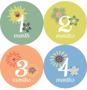 This Little Piggy Baby Month Stickers - Months 1 Through 12; Baby Monthly Stickers Are Great for Baby Photo Albums, Keepsakes & First Step Books. Also Baby Shower Gifts.