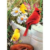 Royal Brush Garden Birds Mini Paint by Number Kit, 13cm by 18cm