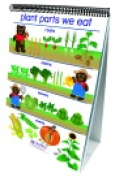 Newpath Learning Early Childhood All About Plants Double Sided Laminated Flip Chart