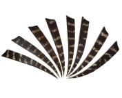 24pcs-13cm Pheasant Feather Shield Turkey Feather Archery Arrow Fletch Fletching-right Wing