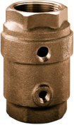 Water Source CCC-100NL 2.5cm . Brass Control Centre Cheque Valve