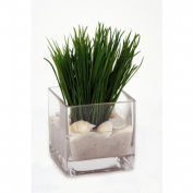 Distinctive Designs International 16940 Grass In Glass Cube With Sand And Shells Pack 2