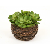 Distinctive Designs International 2765 Artificial Hen And Chic Succulents In Round Abaca Rope Basket