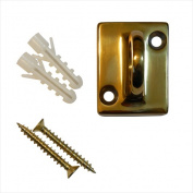 VIP Crowd Control 1596 Gold Wall Plate