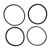 J & J Electronics 006724F Raypak O-Ring Kit - Set of 2