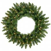 Vickerman A861025LED 60cm . Camdon Fir Wreath 45Led Frost Warm White