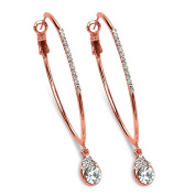 PalmBeach Jewellery 53961 Crystal Drop Hoop Earrings in Rose Gold-Plated