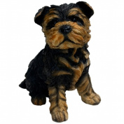 Michael Carr Designs MCD80091 Sergeant Yorkshire Terrier Puppy Small
