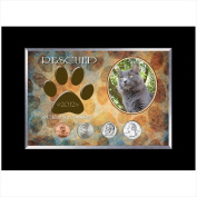 American Coin Treasures 12311 Rescued Year To Remember Cat 4 Coin Frame