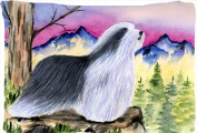 Carolines Treasures SS8338PILLOWCASE Bearded Collie Moisture Wicking Fabric Standard Pillowcase - 50cm x 80cm .