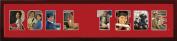 Campus Images AL993SSCF Alabama Crimson Tide Spirit Collage Frame