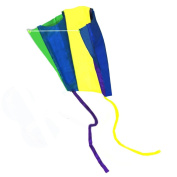 EARTH KITE Beautiful Large Easy Flyer Kite for Kids. Supplest Pocket Kites.-Box colour may vary