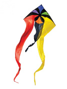 In the Breeze Rainbow Flux Wave Delta Kite, 130cm