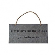 Cheungs FP-4043D Galvanised Wall Sign With Rope Handle - Never Give Up The Things You Believe In