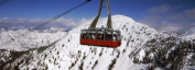 Panoramic Images PPI127551L Overhead cable car in a ski resort Snowbird Ski Resort Utah USA Poster Print by Panoramic Images - 36 x 12