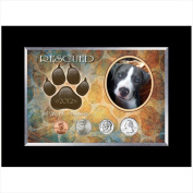 American Coin Treasures 11892 Rescued Year To Remember Dog 4 Coin Frame