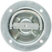 HAMPTON PROD 89315 D-Ring - Polished 16cm . Pin Size