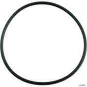 Waterway 805-0238 Diffuser O-Ring