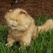 Sunny Toys NP8072M 38cm . Cat - Persian Sitting Animal Puppet