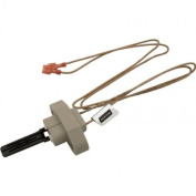 Champlain Plastics R0016400 Igniter Assembly Replacement